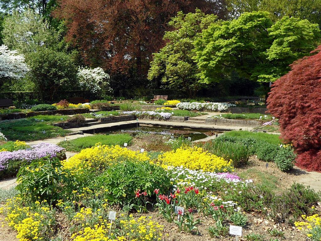 ботанический сад австрия